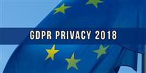 PRIVACY E DPO (RESPONSABILE PROTEZIONE DATI)